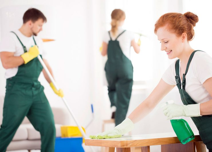 How do you maintain a safe and sanitary working environment?